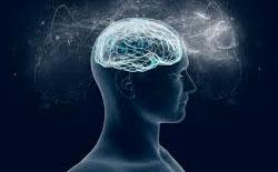 Taller Desarrollo de la Consciencia